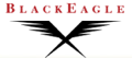 BlackEagle Partners LLC