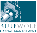 Blue Wolf Capital Partners LLC
