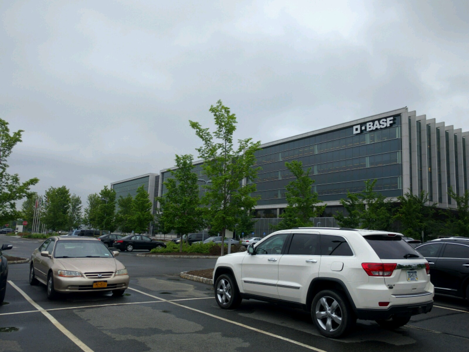 BASF's office in Florham Park, New Jersey.