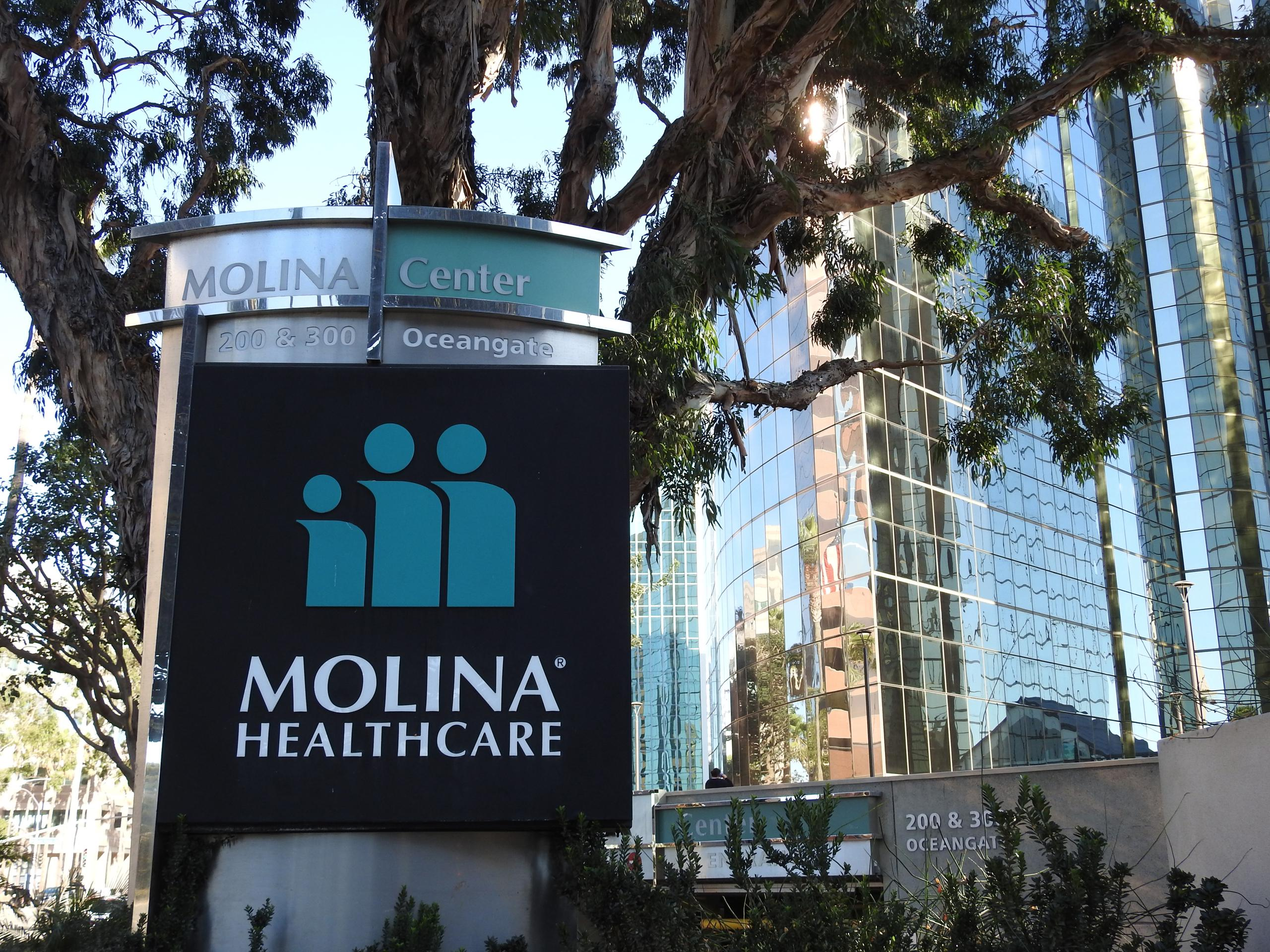 Molina Healthcare Mergers And Acquisitions Summary Mergr